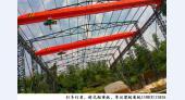 湖北武汉5吨行吊厂家